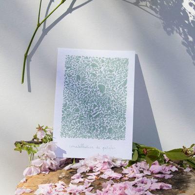 A5-papierblanc-constellationdepetales-vert