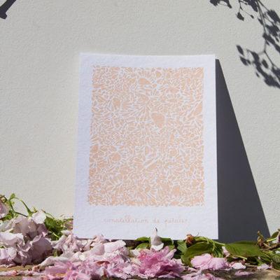 A5-papierblanc-constellationdepetales-saumon