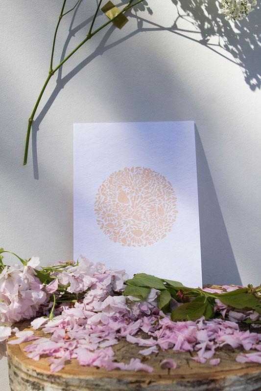 A5-papierblanc-constellationdepetalesenrond-saumon